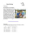 2014-04_Master_Villingen.pdf