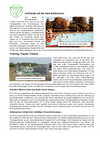 Bericht_VfL_Magazin_1.pdf